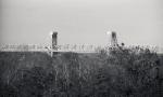 092913 Fort TildenRocka328