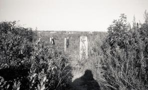 092913 Fort Tilden Rocka368