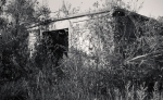 092913 Fort TildenRocka381_1