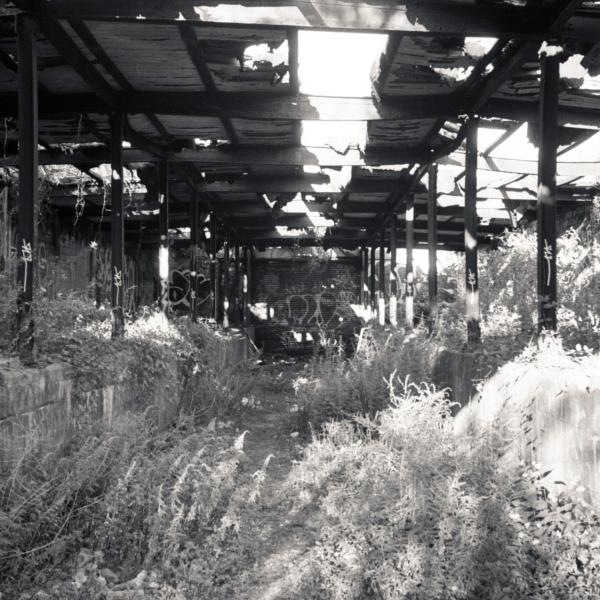 092913 Fort Tilden Rocka385