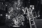 110714_RockCenter Christmas Tree_8659