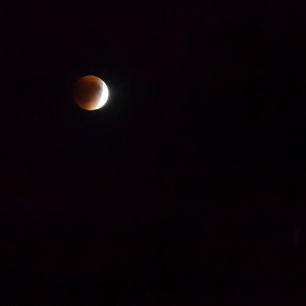 092715_Blood Moon LBI NJ_6405Square