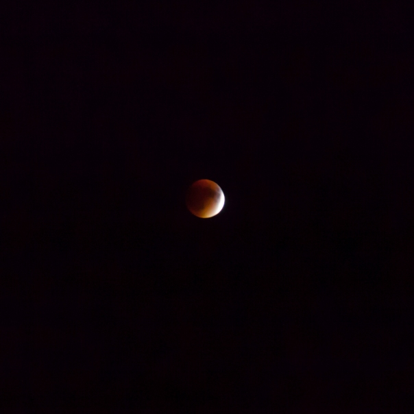 092715_Blood Moon LBI NJ_6409Square