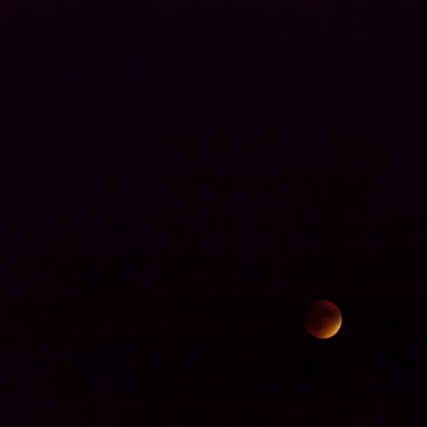 092715_Blood Moon LBI NJ_6411Square