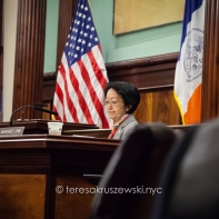 Margaret Chin was elected to the New York City Council in 2010, as the representative for District 1, lower Manhattan.